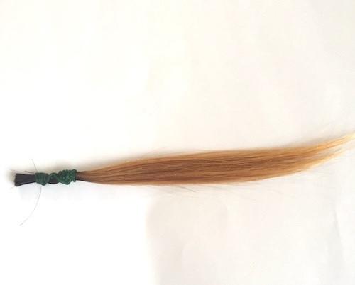 金髪の毛束