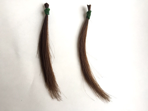 茶色い毛束