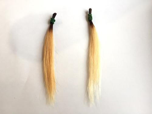 金髪のrカラーの毛束