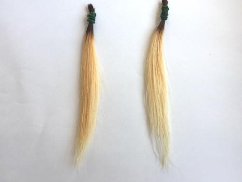 Rカラーの毛束の比較