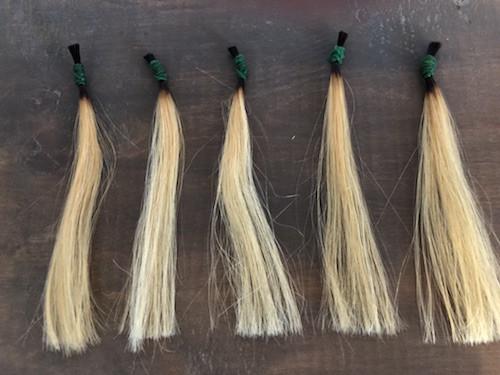 金髪の5本の毛束