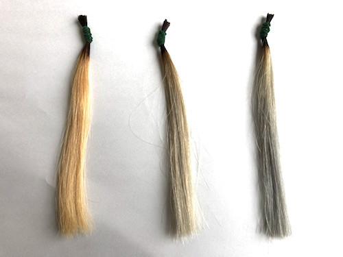 スロウカラーシャンプーの毛束の比較